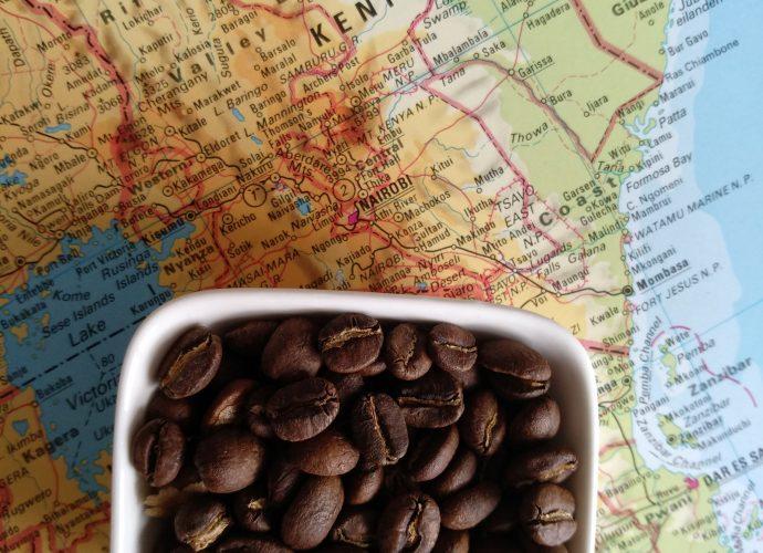 Geisha Specialty Coffee - Kenya Kirinyaga logo
