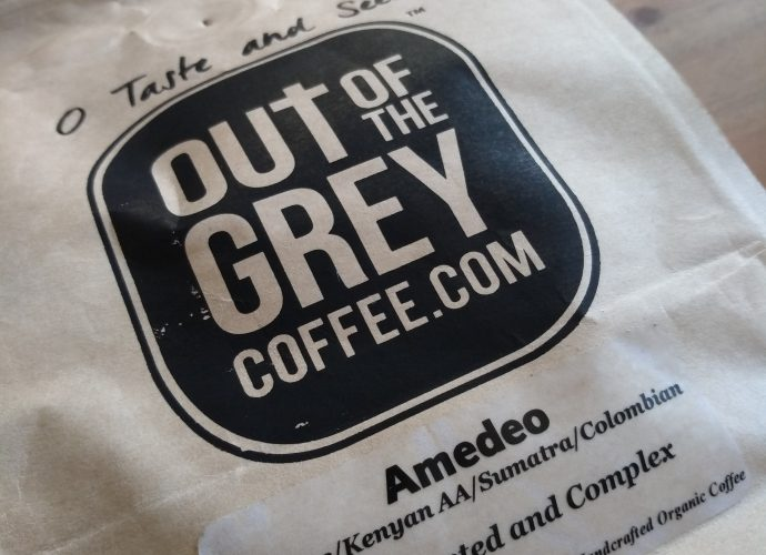 Out of the Grey Amedeo logo